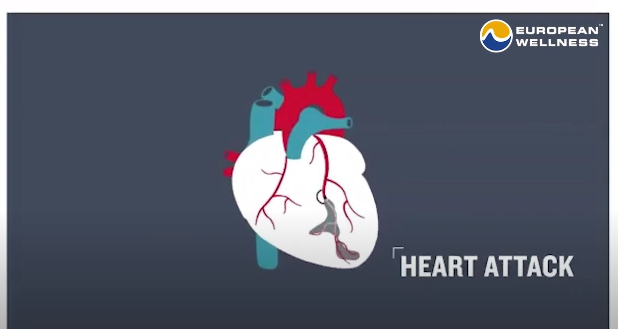 How To Prevent Strokes & Heart Attacks